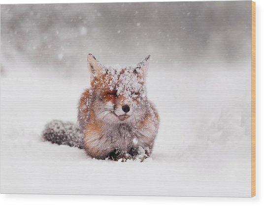 Fairytale Fox II Wood Print