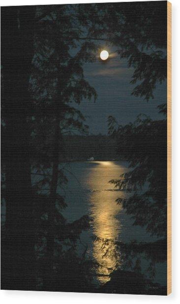 Fairytale Moon Wood Print by RJ Martens