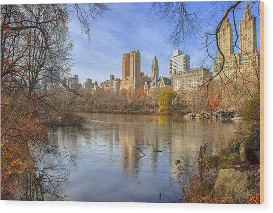 Fall Afternoon At Central Park Wood Print
