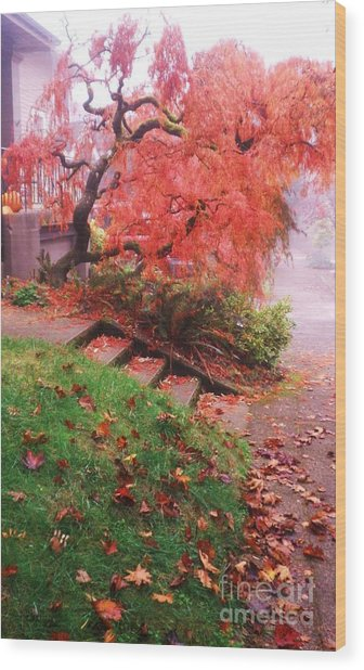 Fall And Fog Wood Print by Suzanne McKay