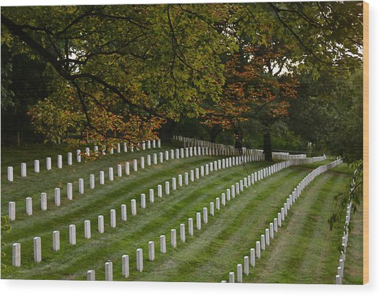Fall At Arlington Cemetery Wood Print by DustyFootPhotography