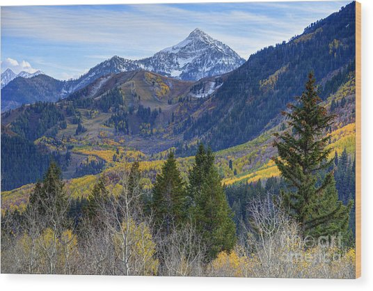 Fall At Cascade Peak And Sundance From Alpine Loop  Wood Print