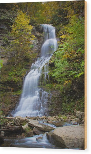 Fall At Cathedral Falls Wood Print