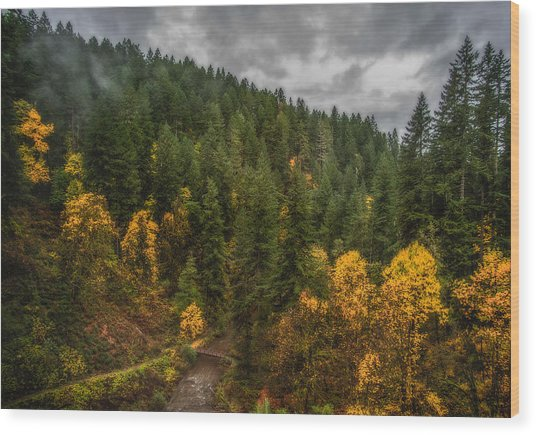 Fall At Silver Falls Wood Print