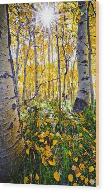 Fall At Silver Lake Wood Print