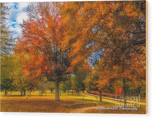 Fall At The Fort Wood Print