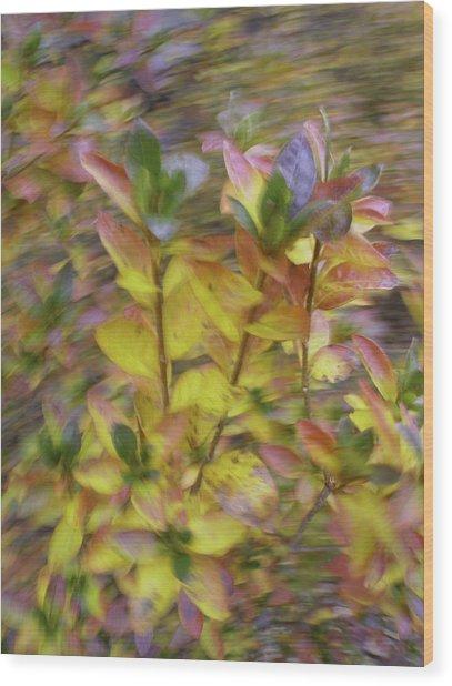 Autumn Azaleas 3 Wood Print