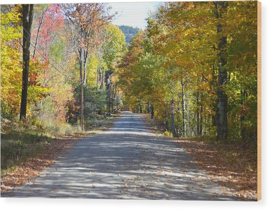 Fall Backroad Wood Print