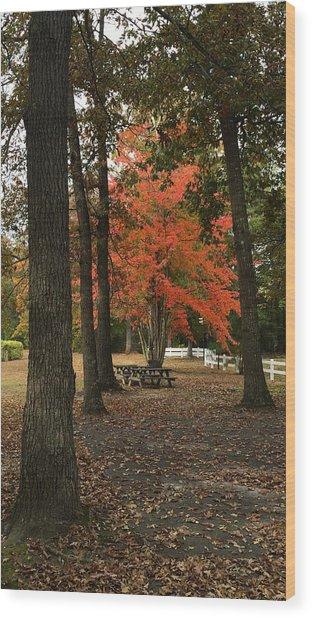 Fall Brings Changes  Wood Print