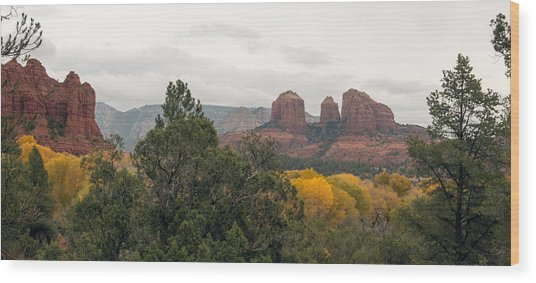Fall Color Sedona 0495 Wood Print