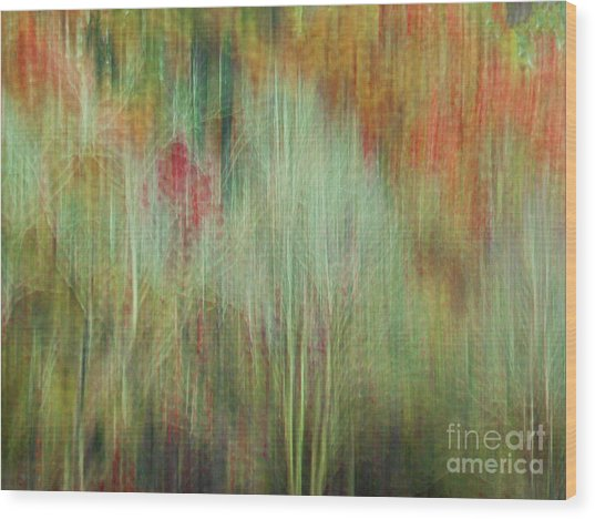 Fall Color Abstract 2 Wood Print
