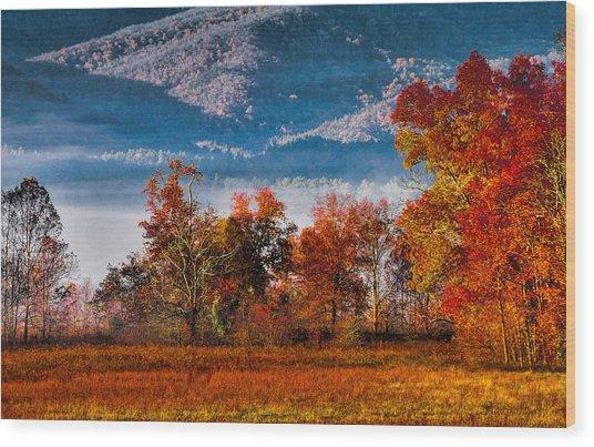 Fall Color Feast Wood Print