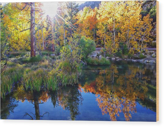 Fall Color Reflection Along Bishop Creek Wood Print
