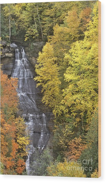 Fall Color Surrounds Chapel Falls On The Michigan Upper Peninsula Wood Print