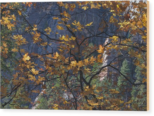 West Fork Tapestry Wood Print