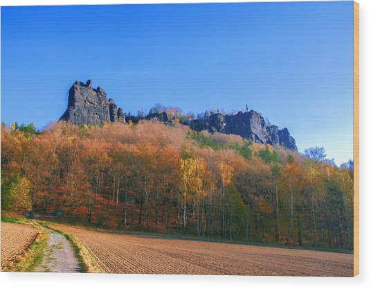 Fall Colors Around The Lilienstein Wood Print