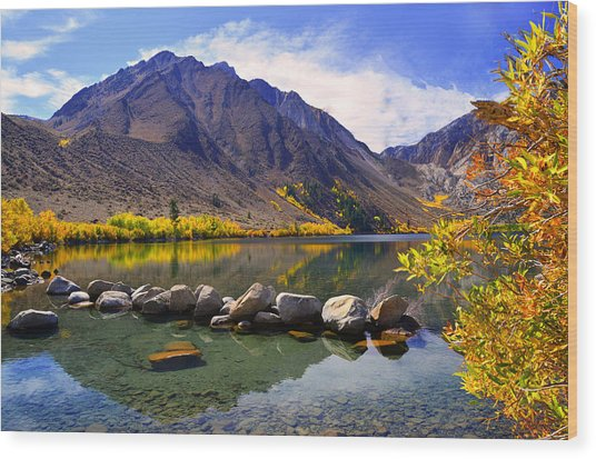 Fall Colors At Convict Lake  Wood Print
