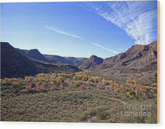 Fall Colors In The Verde Canyon Along The Verde River In Arizona Wood Print