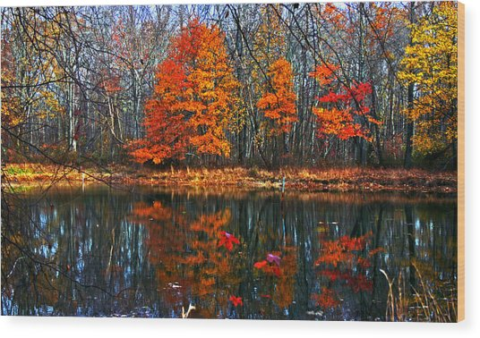Fall Colors On Small Pond Wood Print