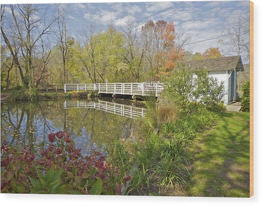Fall Colors On The Canal Wood Print
