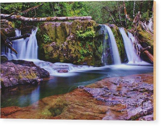 Fall Creek Oregon 3 Wood Print