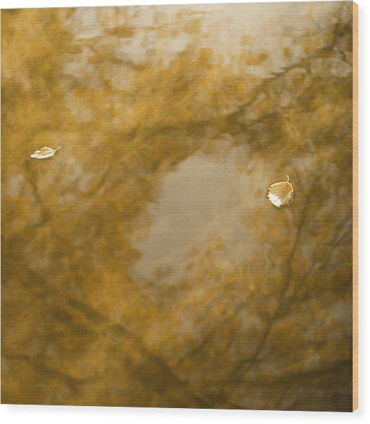 Fall Dream Mirror Wood Print