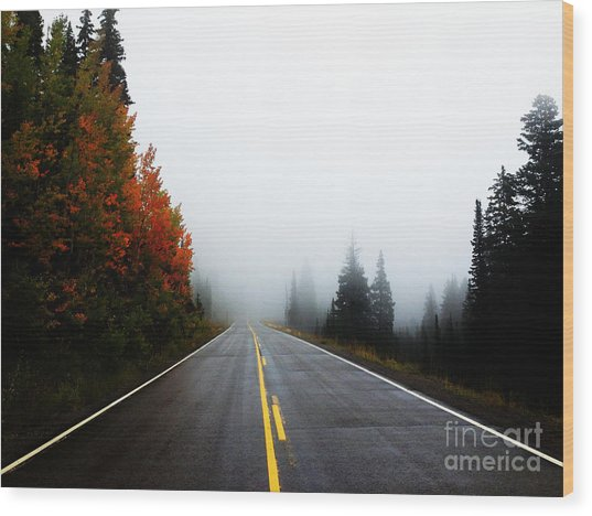 Wood Print featuring the photograph Fall Drive by Kate Avery