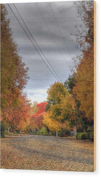 Fall Drive Wood Print by Ren Alber