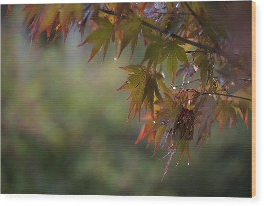 Fall Fantasy Wood Print