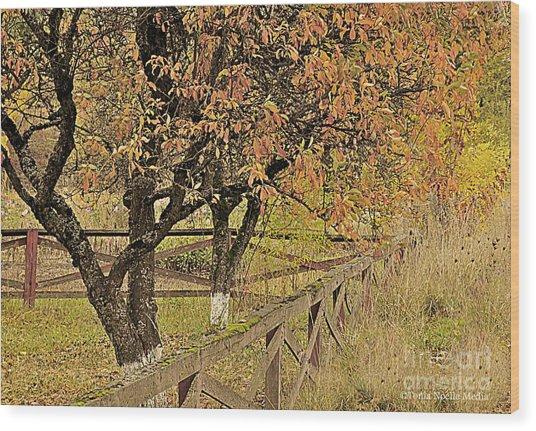 Fall Fenced Wood Print