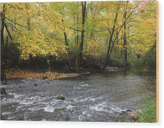 Fall Flow Wood Print