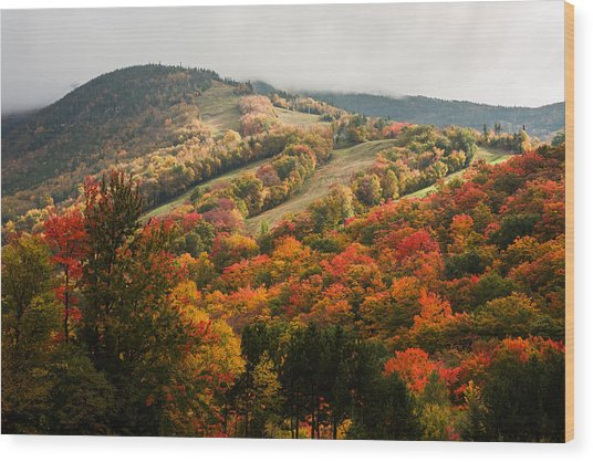Fall Foliage On Canon Mountain Nh Wood Print