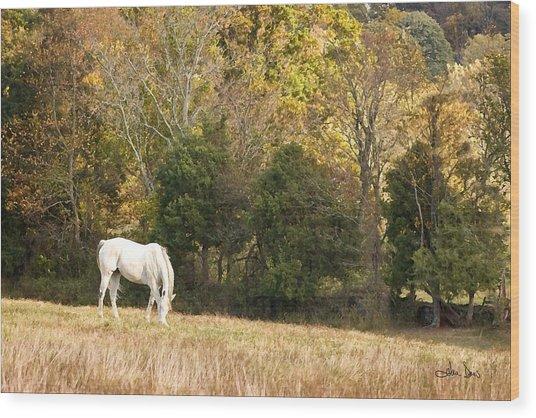 Fall Grazing Wood Print