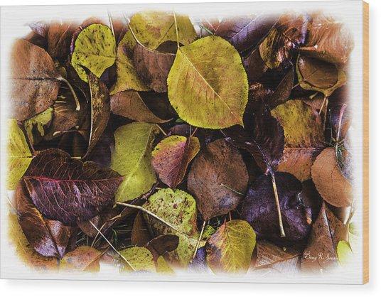 Fall Has Fallen Wood Print by Barry Jones