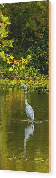 Fall Heron Wood Print