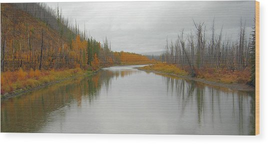 Fall In Glacier National Park Wood Print