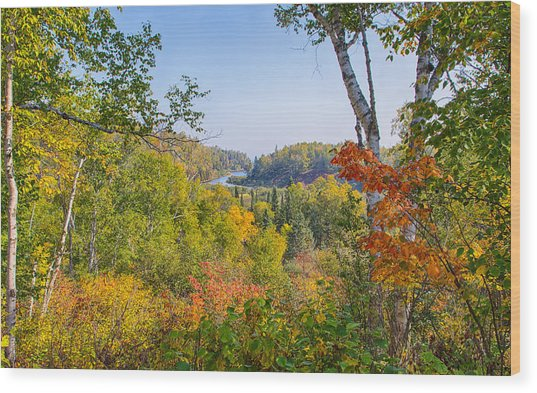 Fall In Gooseberry State Park Wood Print