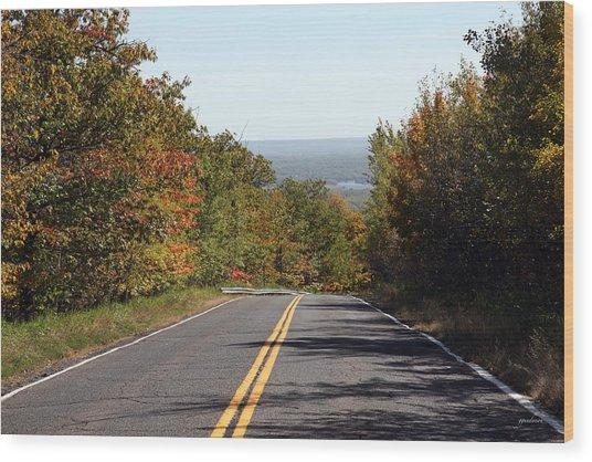 Fall In Minnesota Wood Print