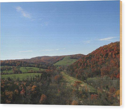 Fall In Missouri Wood Print