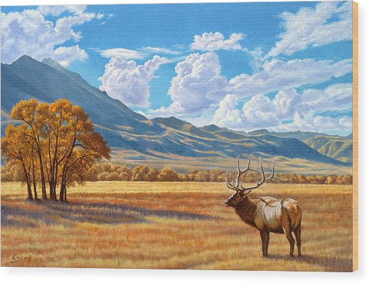 Fall In Paradise Valley Wood Print