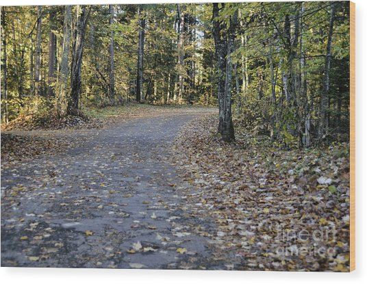 Fall In The North Woods Wood Print