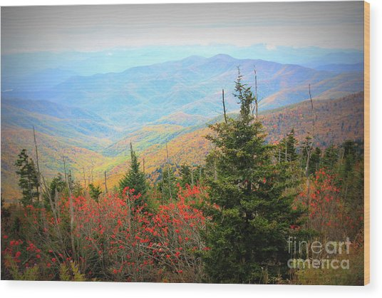 Clingsman Dome Smoky Mountains Wood Print