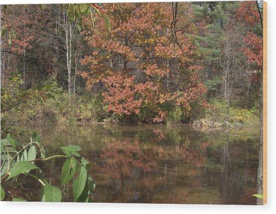 Fall In Upsrate Ny Wood Print by Edward Kocienski