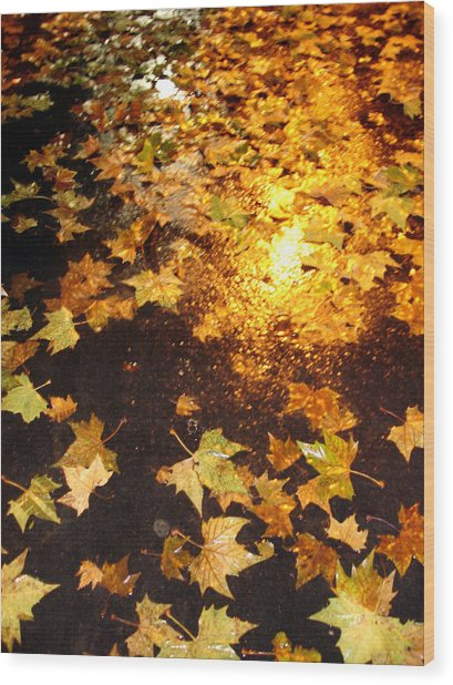 Fall Leaves Wood Print by Michel Mata