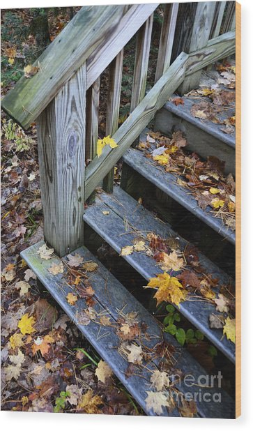 Fall Leaves On Steps Wood Print