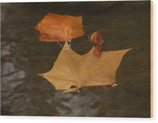 Fall Leaves On Water Wood Print