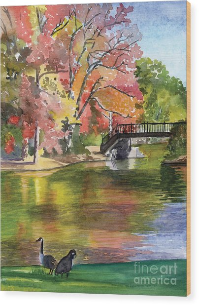 Fall Light - Roger Williams Park Wood Print by Hollis Machala