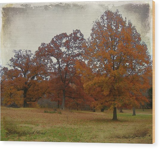 Fall On Antioch Road Wood Print