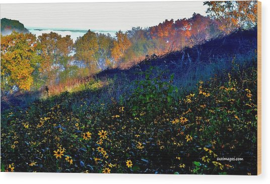 Fall On Garvin Heights Wood Print