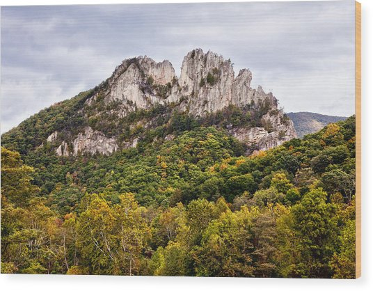Fall On Seneca Rocks West Virginia Wood Print